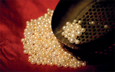 The Pearl Merchant: A Business Lesson on the Principle of Increasing Returns